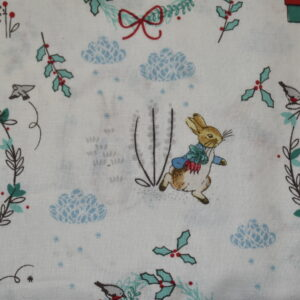 Peter rabbit Christmas