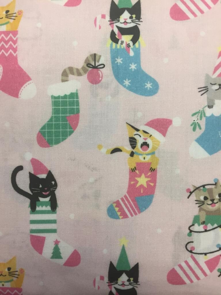 Christmas cats in stockings